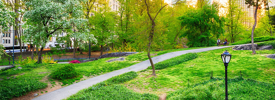 green space in New York City